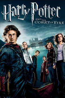 Harry Potter and the Goblet of Fire (2005) download