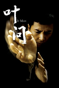 Yip Man (2008) download