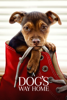 A Dog's Way Home (2019) download