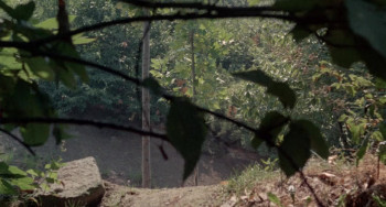 A Quiet Place in the Country (1968) download