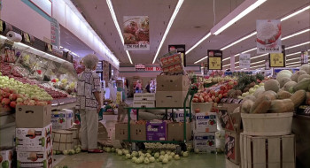 Because of Winn-Dixie (2005) download