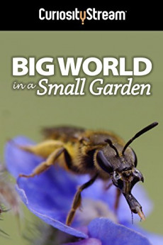 Big World in a Small Garden (2016) download