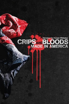 Crips and Bloods: Made in America (2008) download