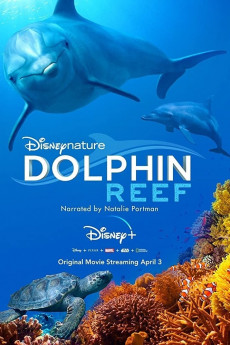 Dolphin Reef (2020) download