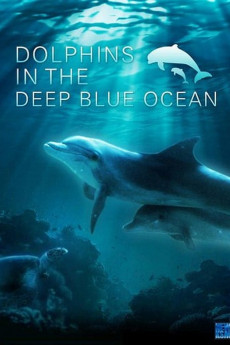 Dolphins in the Deep Blue Ocean (2009) download