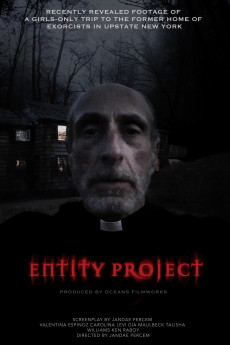Entity Project (2019) download