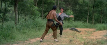 Five Shaolin Masters (1974) download