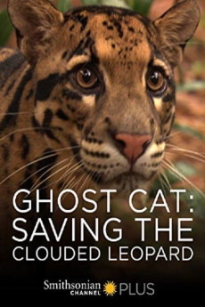 Ghost Cat: Saving the Clouded Leopard (2007) download