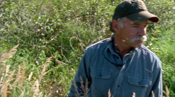 Grizzly Man (2005) download