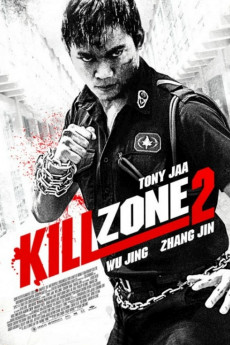 Kill Zone 2 (2015) download