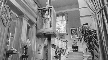 Lady in a Cage (1964) download