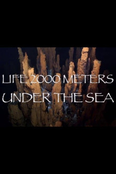 Life 2,000 Meters Under the Sea (2014) download