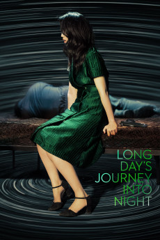Long Day's Journey Into Night (2018) download