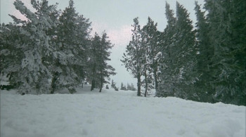 Nature Unleashed: Avalanche (2004) download