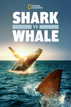 Shark vs. Whale (2020) download