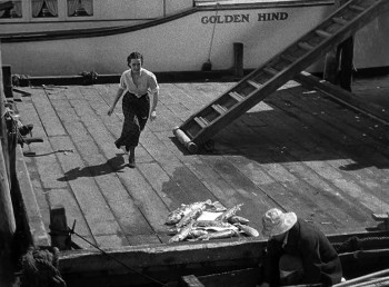 Spawn of the North (1938) download