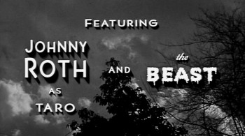 The Bride and the Beast (1958) download