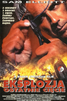 The Final Cut (1995) download