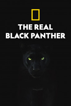 The Real Black Panther (2020) download