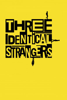 Three Identical Strangers (2018) download