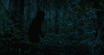 Uncle Boonmee Who Can Recall His Past Lives (2010) download