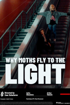 Why Moths Fly to the Light? (2020) download